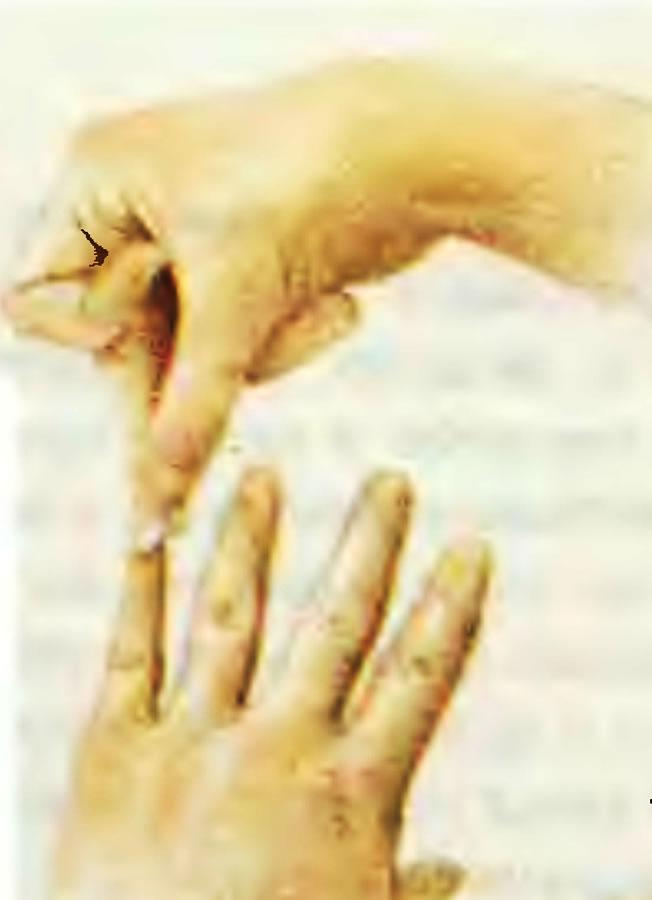1. Подбор ногтей по размеру