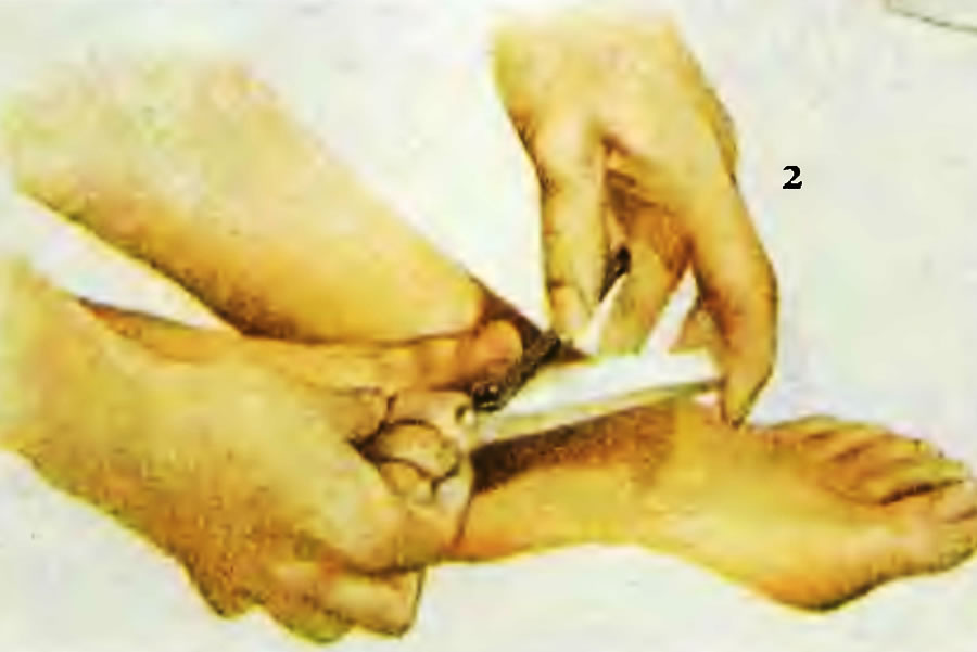2. Подравняйте ногти