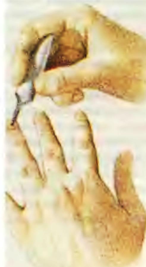 4. Нанесение клея на ногти