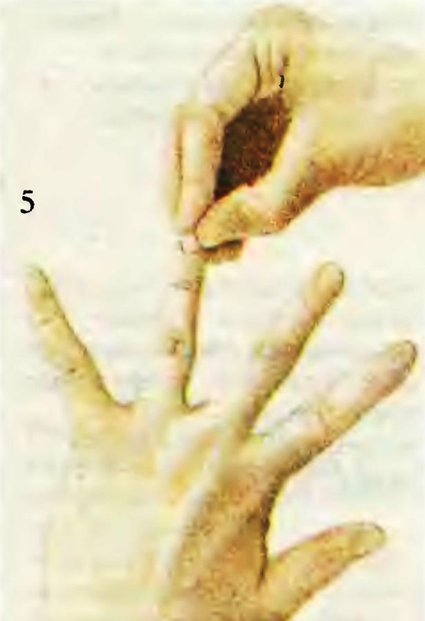 5. Приклеивание ногтя