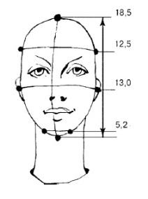 Как выбрать стрижку в зависимости от типа лица