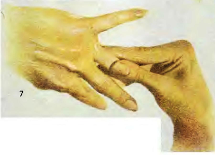 7. Увлажните руки кремом