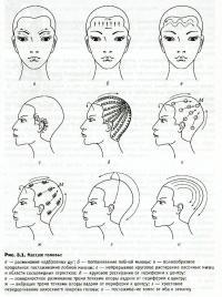 Учимся делать массаж головы: анатомия, показания и техника выполнения