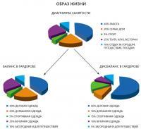 Круговая диаграмма занятости
