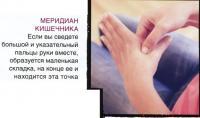 Меридиан кишечника