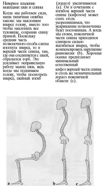 Неверное владение мышцами шеи и спини