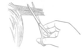 Положение полотен ножниц относительно пряди