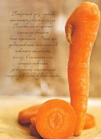 Поперечный срез моркови напоминает радужку глаза