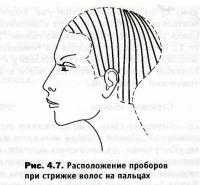 Расположение проборов волос при стрижке