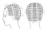 Схема расположения коклюшек при биозавивке