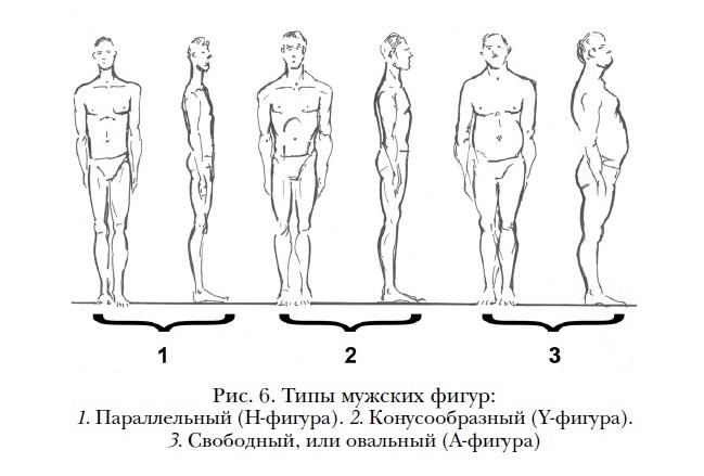 Типы мужских фигур