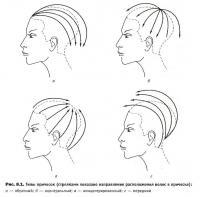 Типы причёсок по расположению волос