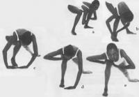 Упражнение для спины не для новичков